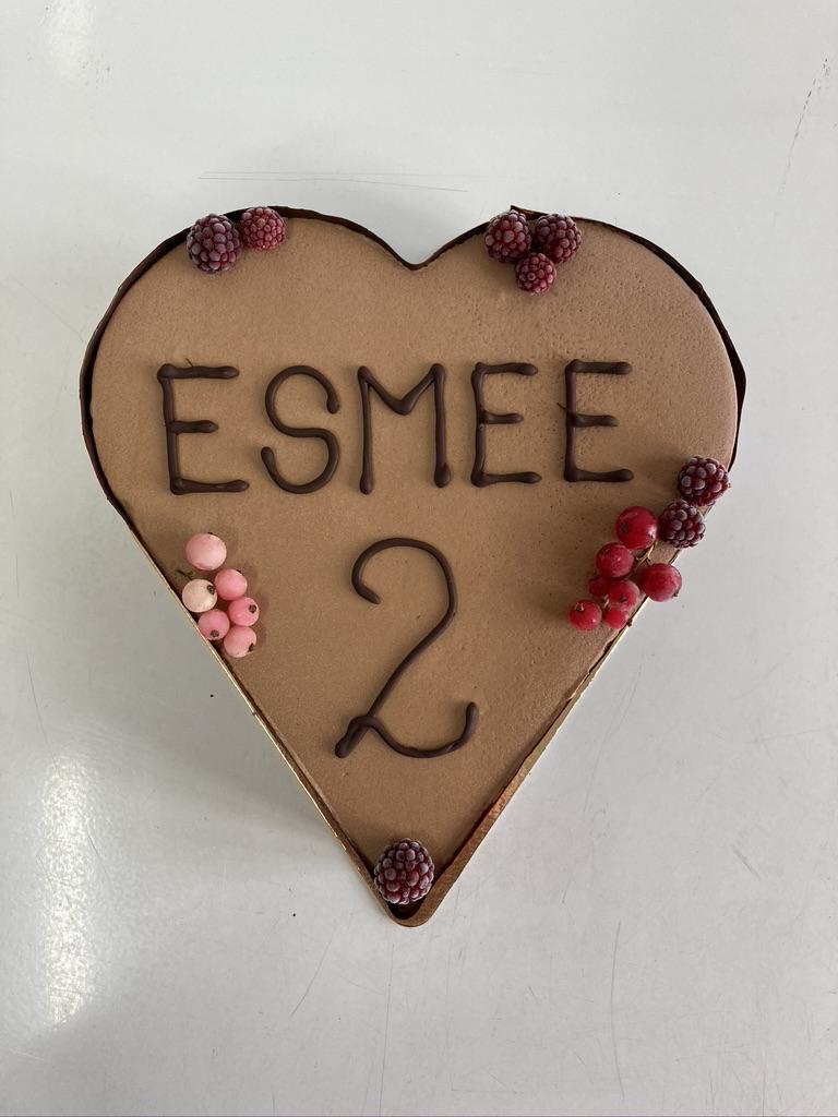 IJstaart vanille - chocolade, chocolade afwerking rondom, fruit bovenop en opschrift 'Esmee 2' bovenop.